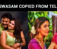 Is Viswasam Copied From Telugu?