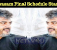 Viswasam Final Schedule Started! Tamil News