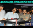 Rangasthalam Created Goosebumps For This Star! Telugu News