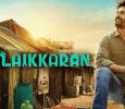 Popular Company Grabs The Theatrical Rights Of Velaikkaran Tamil News