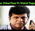 Shivanna Fans From Dubai Rush To Bangalore! Kannada News