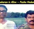 LTTE Leader Prabhakaran Is Alive – Pazha Nedumaran Tamil News