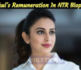 Rakul's Remuneration Details In NTR Biopic Is Out! Tamil News
