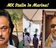 MK Stalin In Marina!