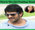 This Is The Girl Prabhas Wants!