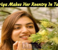 Nazriya Makes Her Reentry In Tamil? Tamil News