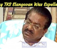 Why Was TKS Elangovan Expelled From The Post DMK Public Relation Secretary? Tamil News