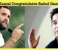 Kamal Congratulates Rahul Gandhi!