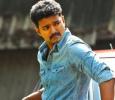 Tamilnadu Milk Agents Association Praises Telugu Actor And Slams Vijay! Tamil News