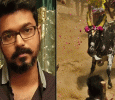 Vijay's Support To Jallikattu Happens To Be Cause Of Troubles