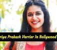 Wink Specialist Priya Prakash Varrier In Bollywood Movie!