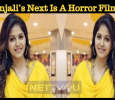 Anjali's Next Is A Horror Film! Tamil News