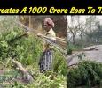 Gaja Creates A 1000 Crore Loss To The EB! Tamil News