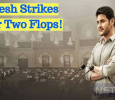 Mahesh Strikes After Two Flops! Telugu News