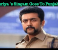 Suriya's Singam Goes To Punjab! Tamil News
