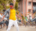 Violence In Bangalore And Mysore Against Mersal