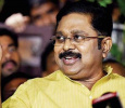 TTV Dhinakaran Supporters Raise Their Voice Against OPS – EPS Merger! To Meet GUV Tomorrow! Tamil News