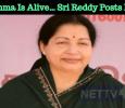 If Amma Is Alive… Sri Reddy Posts In FB Tamil News