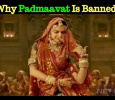 Why This Anger On Padmaavat?