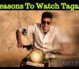 Reasons To Watch Shivanna's Tagaru! Kannada News