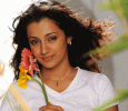 Trisha Drops Out Of The Movie Saamy