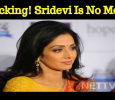 Shocking! Actress Sridevi Is No More! Tamil News