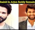 Shahid In Arjun Reddy Remake!