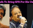 Anirudh To Bring SPB For His Uncle? Tamil News