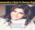 Is This Samantha's Role In Seema Raja?