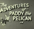 The Adventures Of Paddy The Pelican English tv-shows on ABC