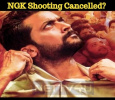 NGK Shooting Cancelled? Tamil News