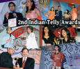 2nd Indian Telly Awards