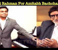 AR Rahman For Amitabh Bachchan?