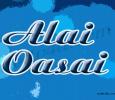 Alai Oasai