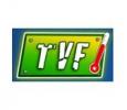 TVF Hindi Channel