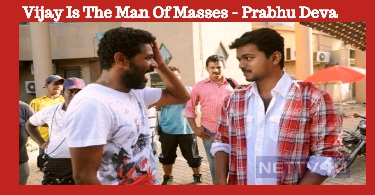 Vijay Is The Man Of Masses! Tamil News