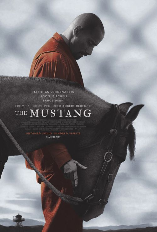 The Mustang Movie Review English Movie Review