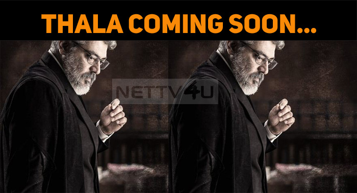 Thala Breaks Thursday Sentiment! Huge Treat To ..