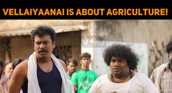 Vellaiyaanai Is All About Agriculture!