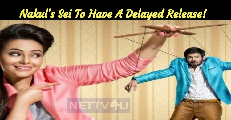Nakul's Sei To Have A Delayed Release!