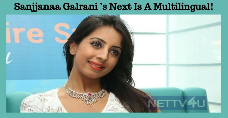 Sanjjanaa Galrani's Next Is A Multilingual!