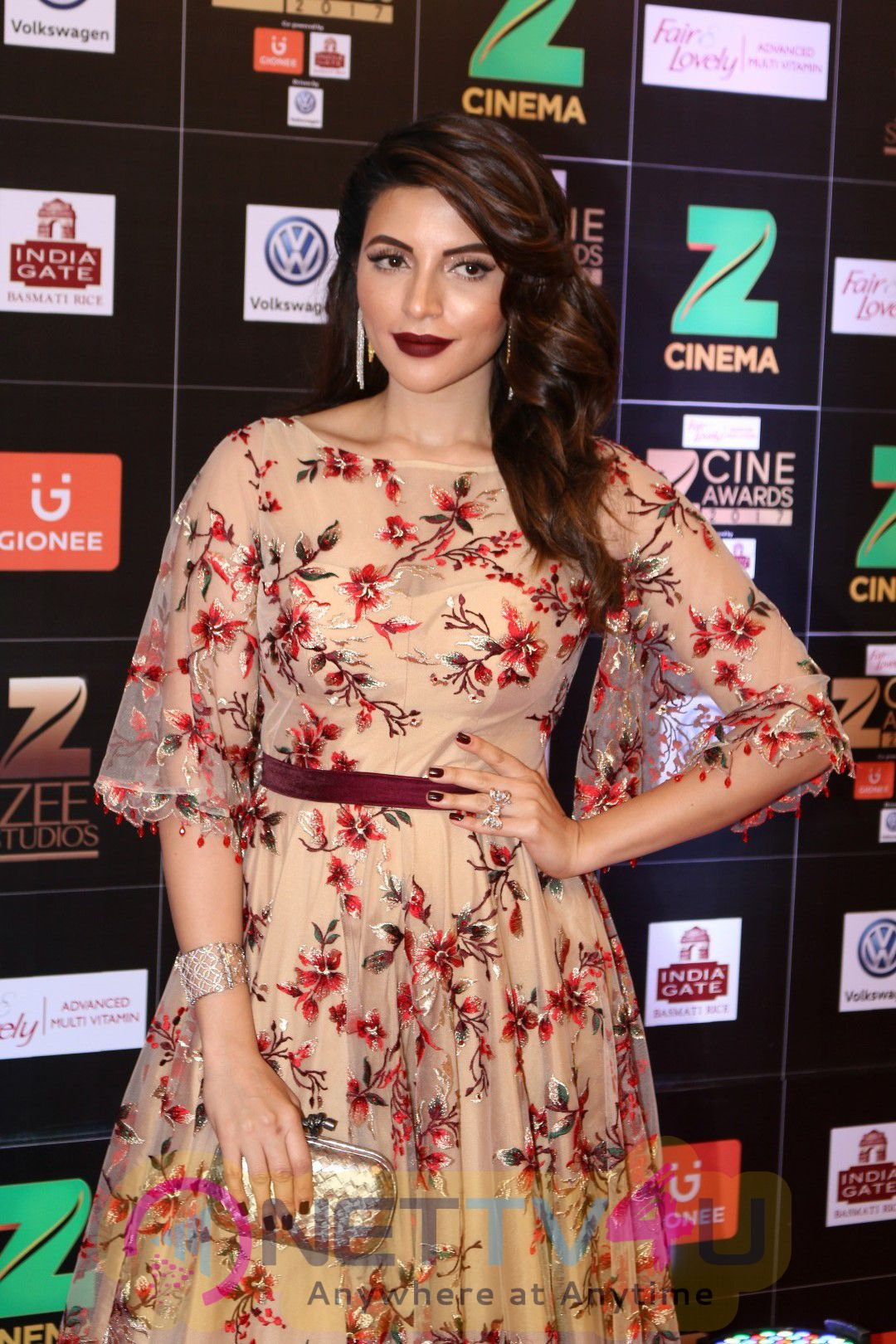 Red Carpet Of Zee Cine Awards 2017 Excellent Photos Tamil Gallery