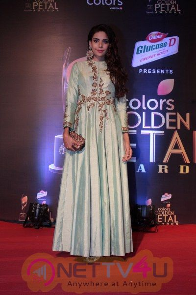 Red Carpet Of The 5th Colors Golden Petal Awards Stunning Pics Hindi Gallery
