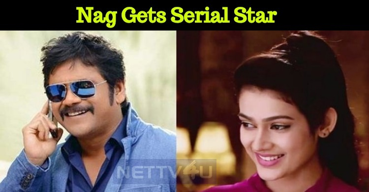 Mini Screen Actress For Nagarjuna!