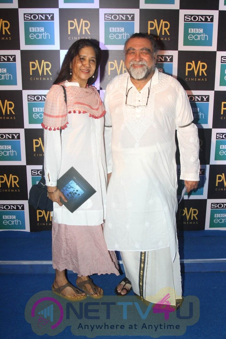 Screening Of Sony BBC Earth's Film Blue Planet 2 At Pvr Icon In Andheri  Exclusive Images