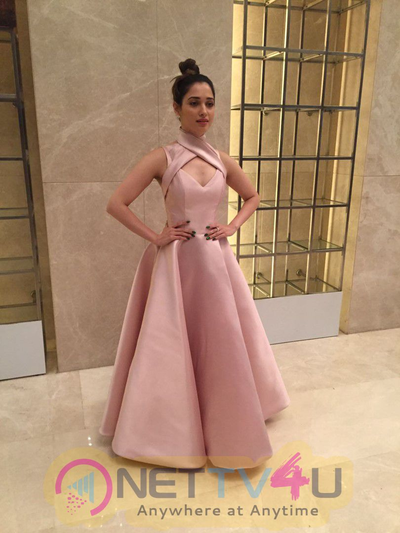 Gorgeous Tamannaah Bhatia Looked Radiant In A Mark Bumgarner Gown For The Vanitha Awards 2017