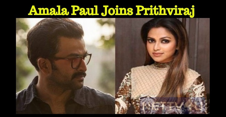 Amala Paul To Be A Part Of Prithviraj's Movie!