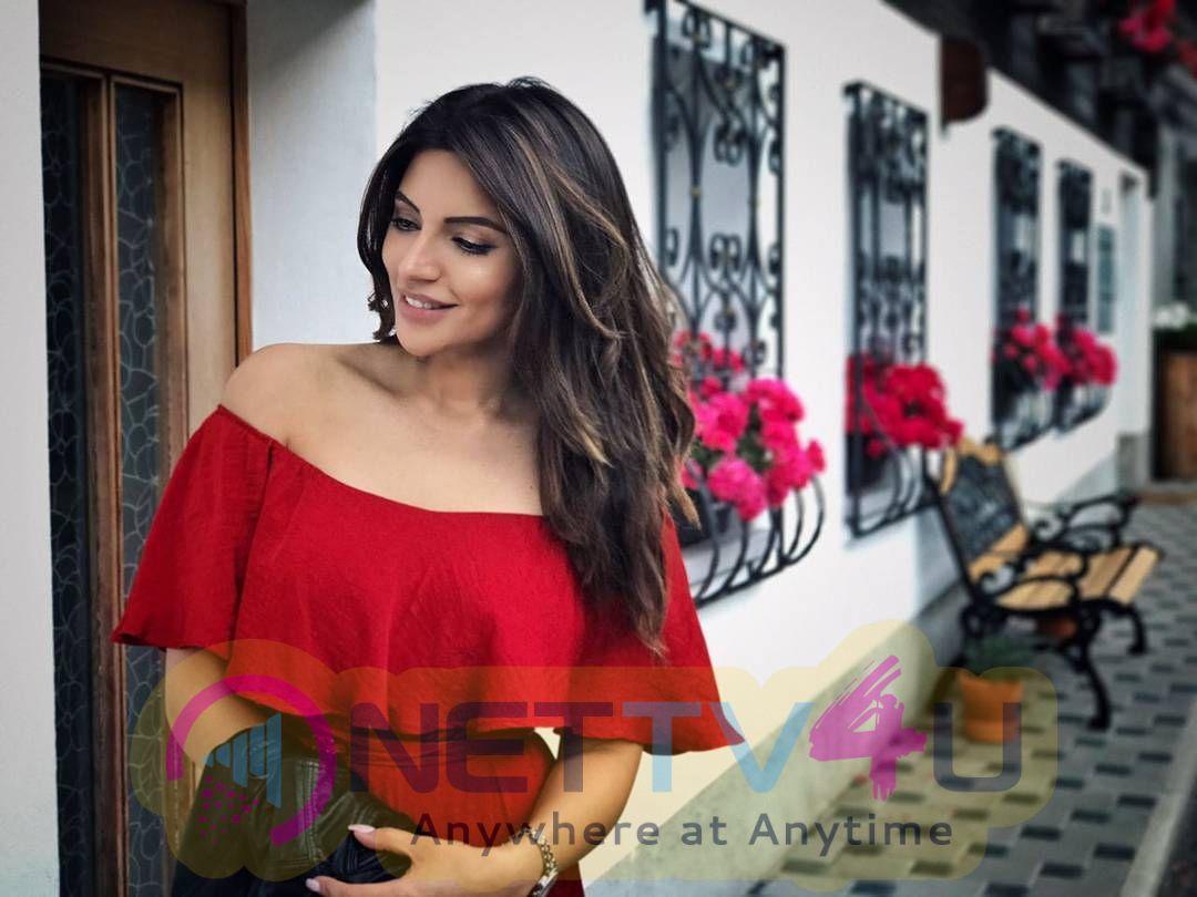 Actress Shama Sikander Latest Hot Photo Shoot