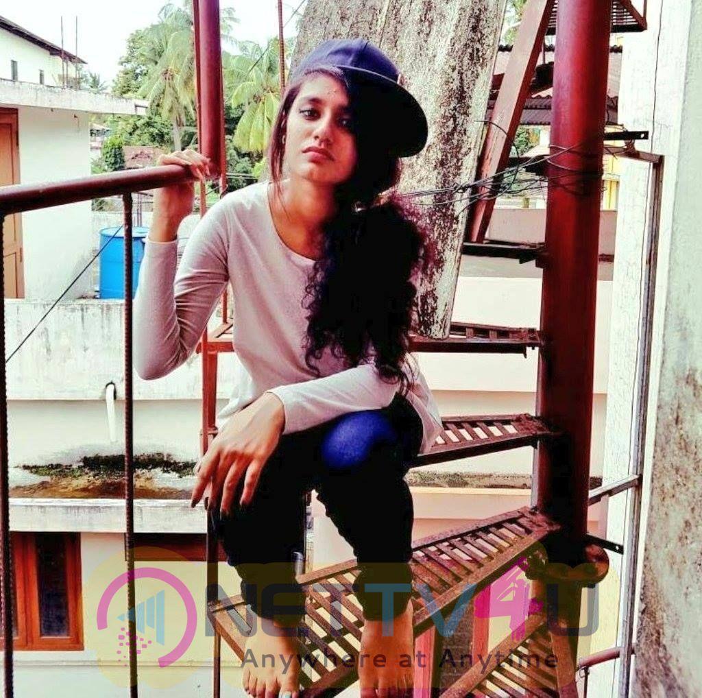 Priya Prakash Varrier Latest Pictures