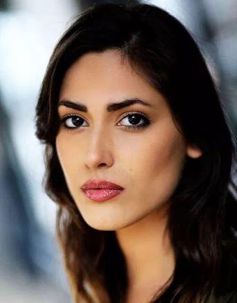 Rita Siddiqui Hindi Actress